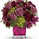 Celebrate - Cube Mauves, Pinks, Greens
