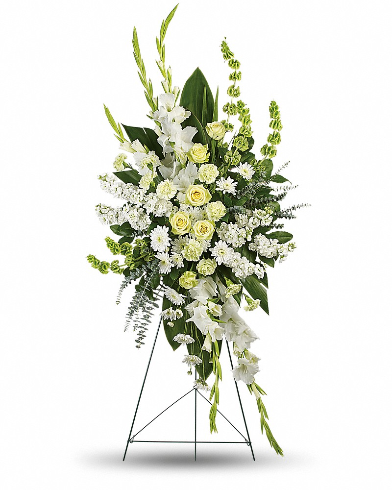 Sympathy - Magnificent Life starting @$184.95