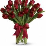 10 tulips $49.95