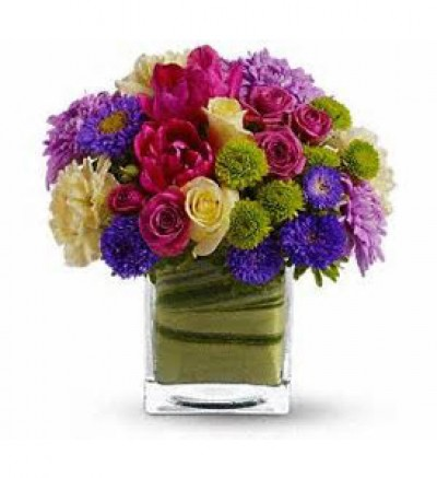 Cube Design - Variety of Blooms starting at 49.99